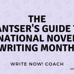 pantser's guide
