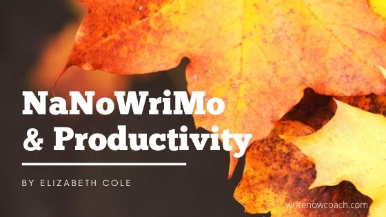 NaNoWriMo Productivity